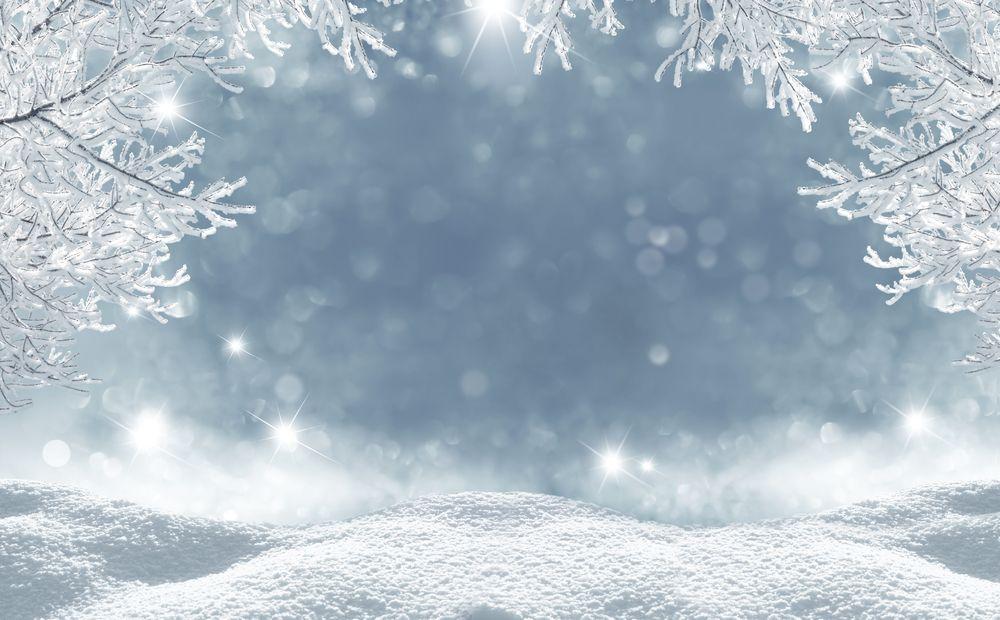 rendering in the winter